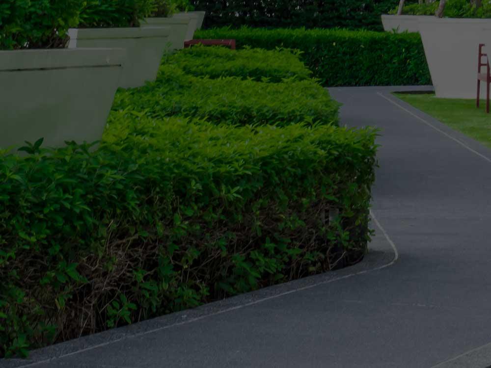 Birmingham Commercial Landscaping