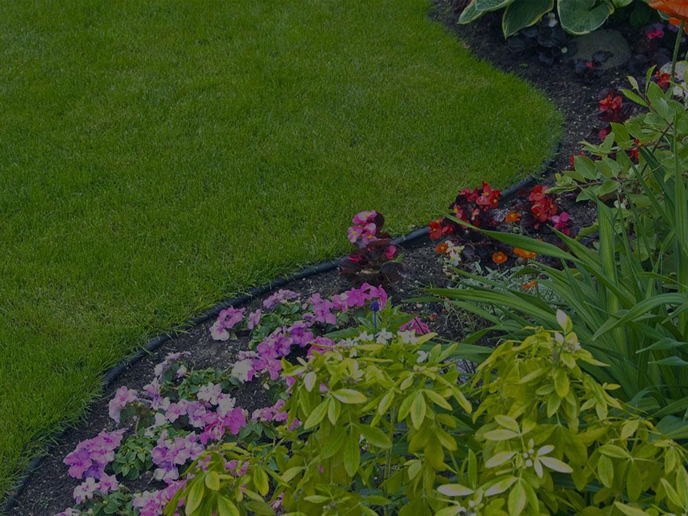 Birmingham Garden Design