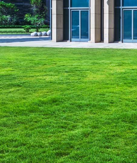 Alabama Greenscapes, LLC Aeration