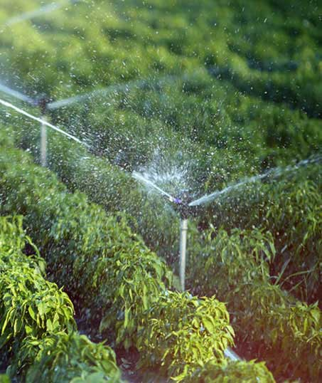 Alabama Greenscapes, LLC Irrigation System Repair