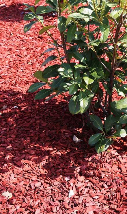 Alabama Greenscapes, LLC Mulching