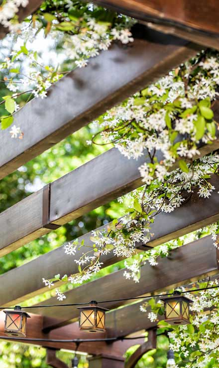 Alabama Greenscapes, LLC Pergola