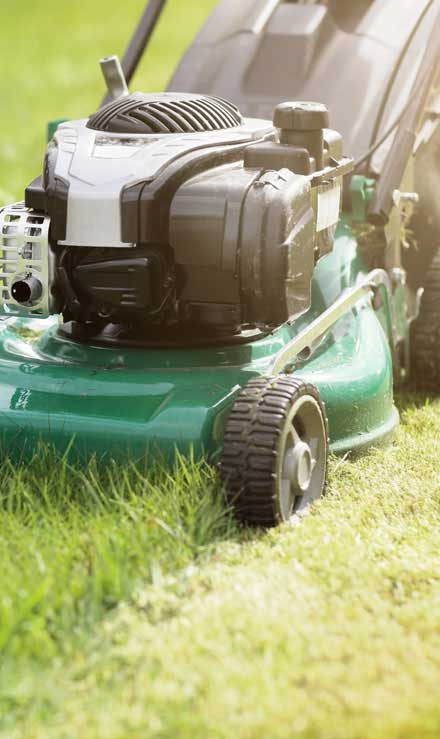 Alabama Greenscapes, LLC Residential Lawn Mowing